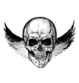 Hand drawn winged skull EPS vector image