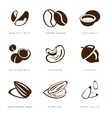Nuts Beans and Seed vector image vector image