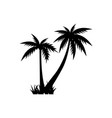 palm tree graphic design template isolated vector image vector image