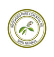 rosewood essential oil label aromatic plant vector image vector image