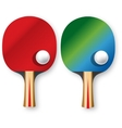 two rackets for table tennis vector image