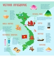 Vietnamese Culture Touristic Flat Infograhic vector image