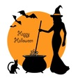 beautiful witch and cauldron vector image vector image