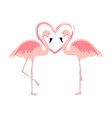 cartoon pink flamingos cute flamingo couple birds vector image