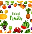 Fruit or vitamin or organic food poster vector image vector image