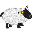 little lamb vector image