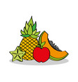 pineapple apple papaya and slice carambola fruits vector image vector image
