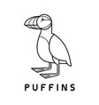 puffins logo design template linear style vector image vector image