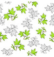seamless pattern with hand drawn maple leaves vector image vector image