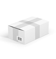 White parcel vector image vector image