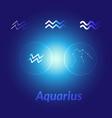 the water-bearer aquarius sing star constellation vector image