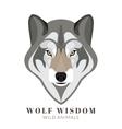 Cute grey wolf vector image