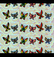 background seamless with butterflies and rainbow vector image vector image