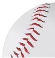 baseball closeup vector image vector image