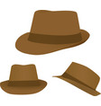 brown hat vector image