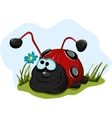 Cheerful-ladybug-for-children vector image vector image
