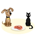 Dog and cat near meat vector image