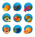 fruits and berries icon set vector image vector image