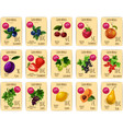 Fruits and berries on price or sale tag card vector image vector image