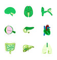 icons set in flat style human organs vector image vector image