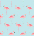 seamless pattern with cartoon pink flamingo bird vector image vector image