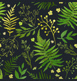 seamless pattern with leaves floral set vector image