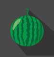 watermelon cartoon flat icondark background vector image vector image