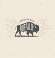 wild buffalo vector image