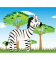 Animal zebra in savannah vector image