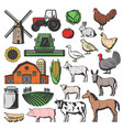 cattle farm animals and agriculture harvesting vector image