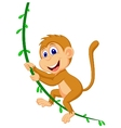 Cute monkey cartoon swinging vector image vector image