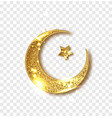 ramadan decoration isolated gold shiny glitter vector image vector image