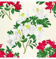 seamless texture white and red rhododendron twig vector image vector image