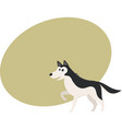 cute black and white husky dog character with vector image vector image