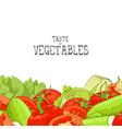 fresh vegetable vector image vector image