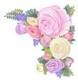 Gentle Ranunculus Flowers vector image vector image