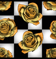 golden roses on chessboard background vector image vector image