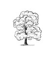 tree sketch hand drawing silhouette tree vector image vector image