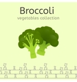 Vegetables Collection Image vector image
