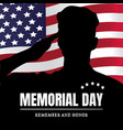 memorial day usa remember and honor vector image