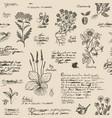 seamless pattern on theme herbal medicine vector image