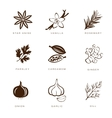 Spices Condiments and Herbs vector image vector image
