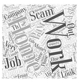 The Number One Work At Home Scam Explained Word vector image vector image