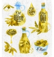 Watercolor drawn olive oil retro style vector image vector image