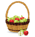 Basket of Red and Green Apples3 vector image vector image