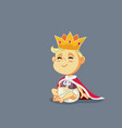 funny king bawith gold crown and mantle vector image vector image