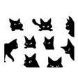 funny looking cat cartoon black pet silhouette vector image
