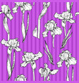 iris violet pattern vector image vector image