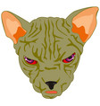 mug of the cat sphinx vector image vector image