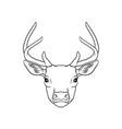 sketch of deers head portrait of forest animal vector image